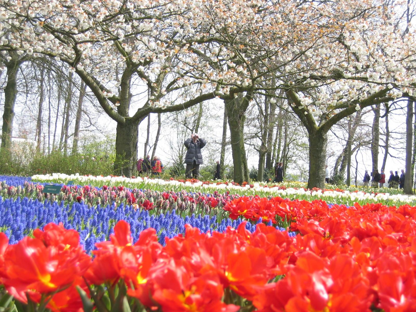 http://mirza.persiangig.com/holand_hamborg_trip/holand_hamborg_avril_2008%20149.jpg